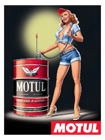 Picture for category MOTUL OIL